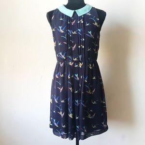 Zara hummingbirds dress